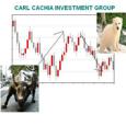 Carl Cachia picture