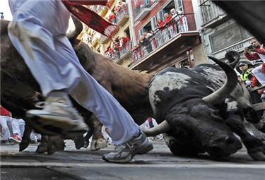 Rampaging Bulls
