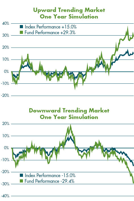 IMAGE Prospectus1 Why Do People Think That Leveraged Funds and ETFs Should Closely Track the Index Times the Multiplier Over the Long Term?