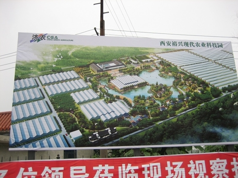 Picture #4: Billboard showing greenhouses facilities under construction