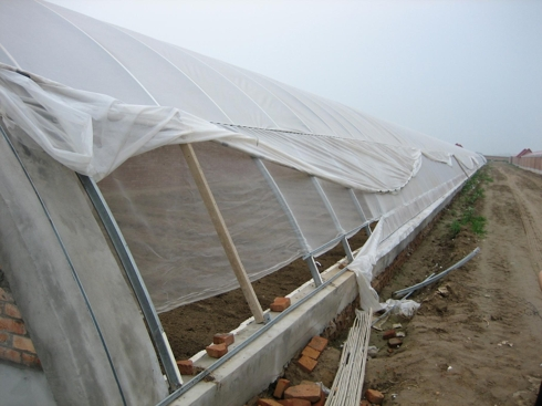 Picture #6: Uncompleted greenhouse with simple brick, concrete structure