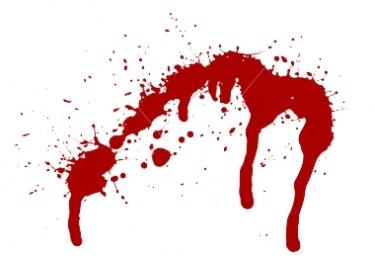 ECD's Bloody Quarter: PV Sales Collapse, Layoffs