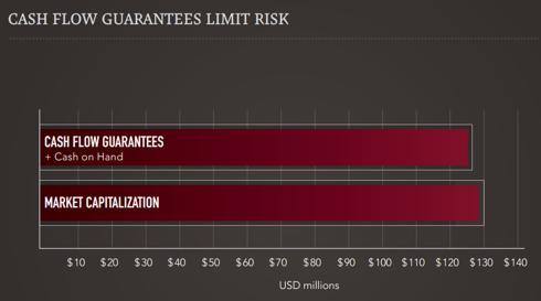 Cash Flow Guarantees