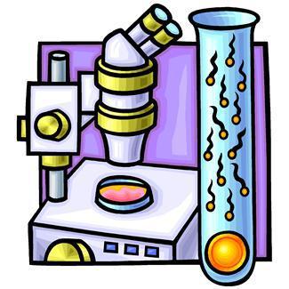 artificial insemination,eggs,fertilization,healthcare,laboratories,equipments,medicines,microscopes,reproduction,science,sperms,technologies,test tubes