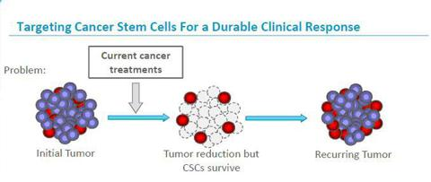 The current chemo regimens are reducing the tumor size but cannot kill CSCs efficiently which is resulting in tumor recurrence.