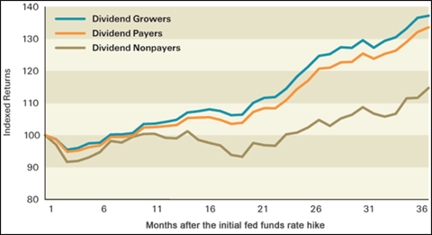 Difference in Dividend Types