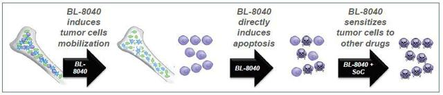 BL-8040 way of action