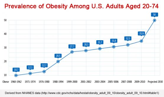 https://staticseekingalpha.a.ssl.fastly.net/uploads/2014/8/12/saupload_obesity-trend-e1382104177114.png