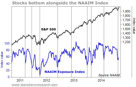 stocks and NAAIM index