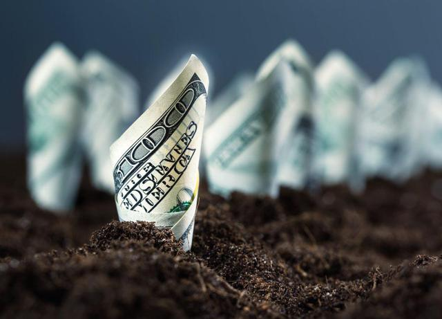 growth income