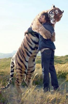 Tiger hugs Man