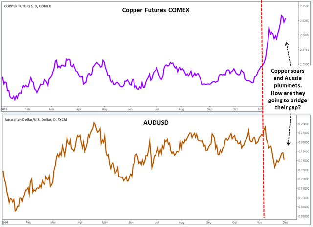 Copper vs Aussie