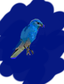 Twittering And Other Thoughts About bluebird bio