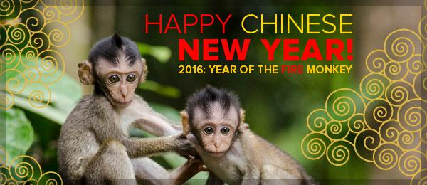 Happy Chinese New Year! 2016: Year of the Fire Monkey