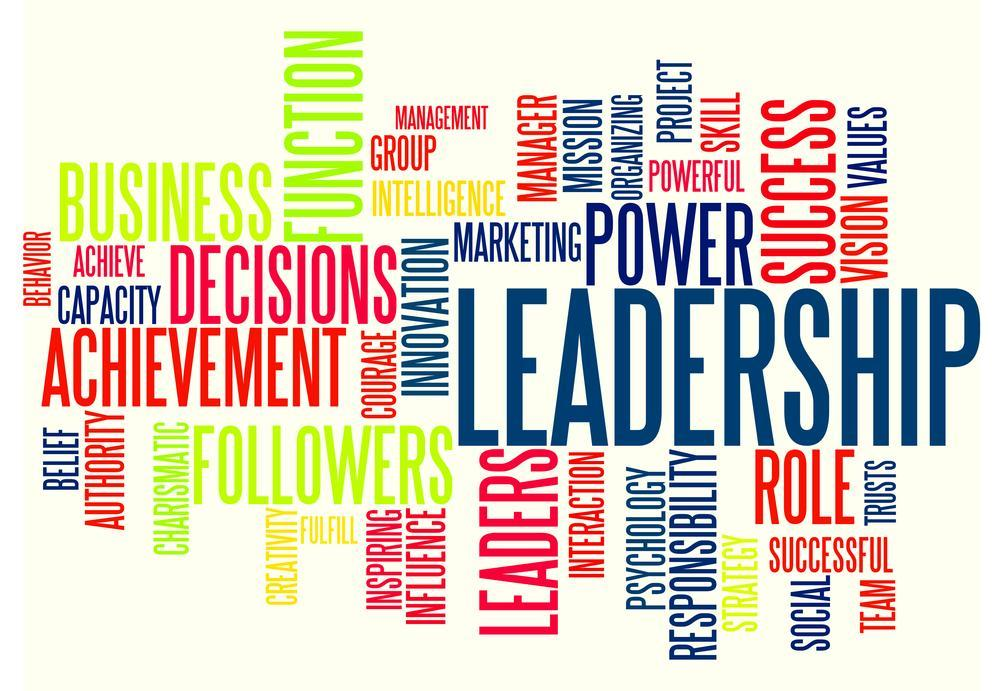 Image result for Seeking Leaders