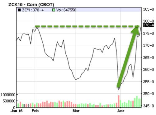 Corn 3 MO